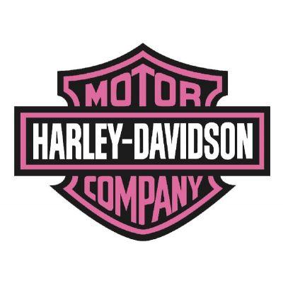 Logo Harley Davidson Rose rétro éclairant