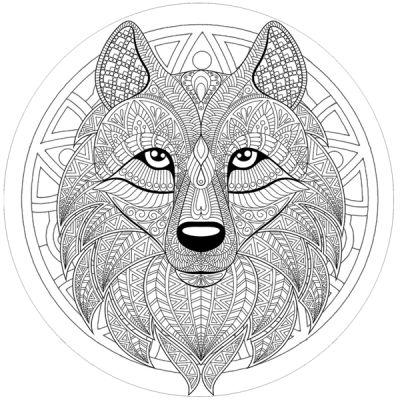 Stickers casque moto deco tete de loup