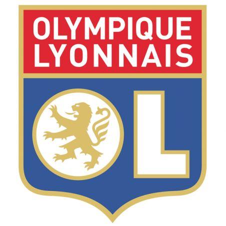 Stickers casque moto ou scooter Olympique Lyonnais