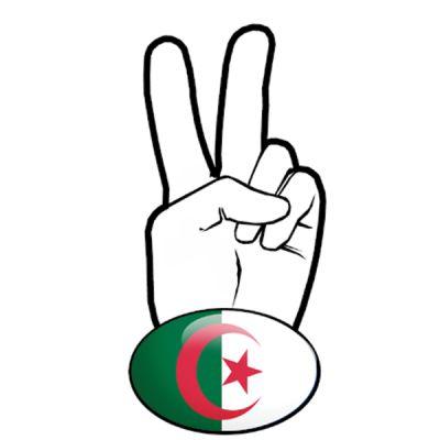 Stickers retro eclairant V motard Drapeau Algérien